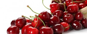save_cherry_launched_national_cherry_festival_1_634786755206696000[1]