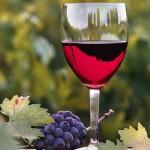 Class of Wine jpg