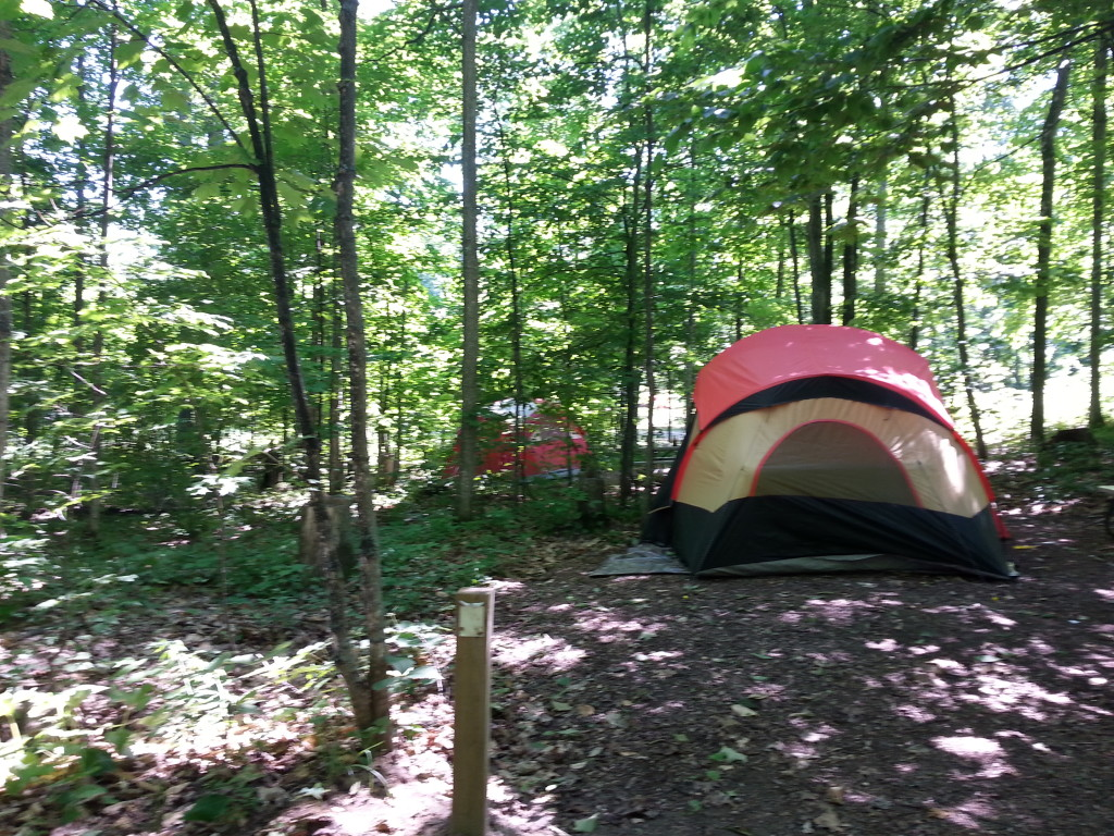 Northern Michigan Campground Rates Wild Cherry Resort